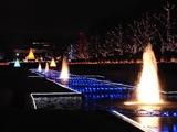 昭和記念公園22