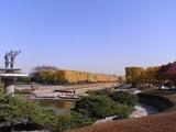 立川口前のイチョウ並木を外から1
