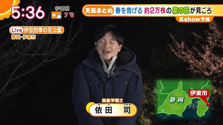 【エンタメ画像】モノノフお天気キャスター・依田さん『真っ赤な朝焼け、黄色と緑の菜の花、ピンクの桜、私のジャケットは実は紫!!!花公園にはいろんな色があります』