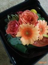 花(だいだい)