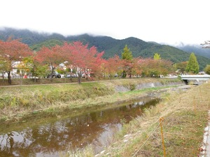 河口湖の紅葉(1024x768)