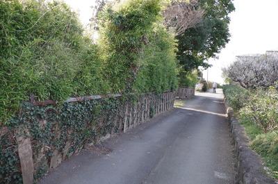 大雄山荘跡の前の道