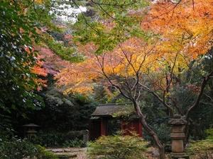 五島美術館の庭園(1024 x 768)