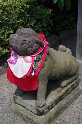 浅草寺恵日須大黒天堂の狛犬(左)