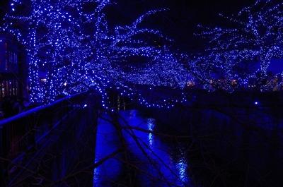中目黒青の洞窟1