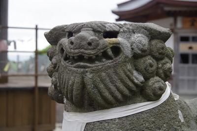 義経寺の狛犬(右アップ)