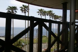 ジャングルパレスの窓