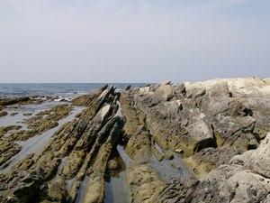 海岸(1024X768)