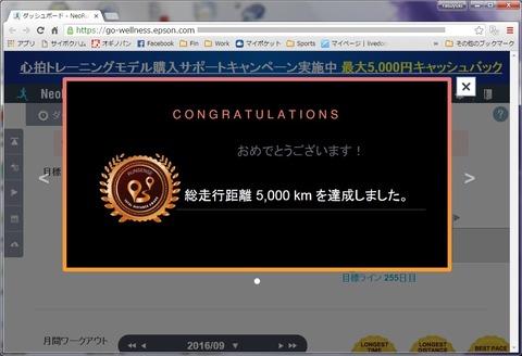 Run5000