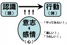 d6bc1f63.jpg