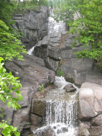 鶴沼公園11