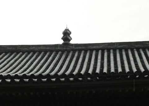 KIMG4608