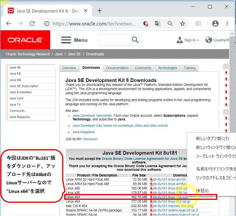 IT0029_0_wget_url_check_method_2
