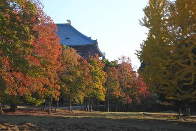 161112東大寺
