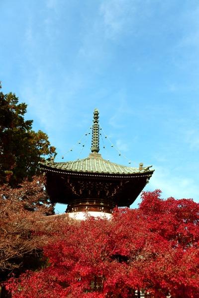 161126清涼寺