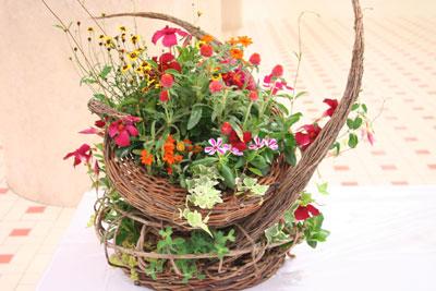 園芸生産組合長賞