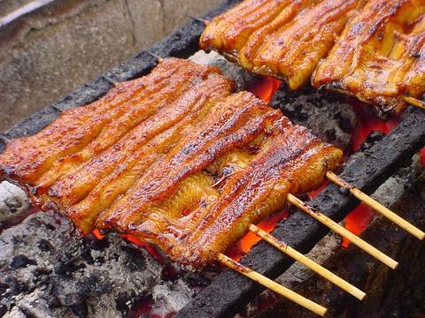 日本人「土用の丑の日?食べないです…」ウナギ「やったぜ」業界人「なんてことだ許されない」
