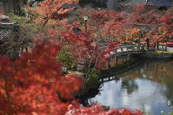 京都006