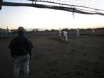 花咲徳栄高校野球部練習風景