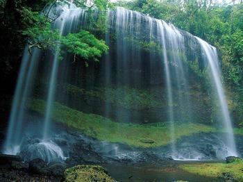 廬山の滝 : 中国の景色
