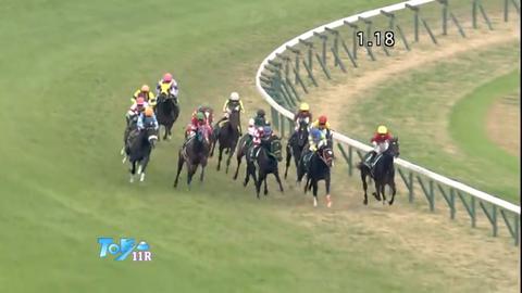 【東京スポーツ杯2歳S2018予想展望〜素質馬集結・来年のクラシックを占う一戦〜】