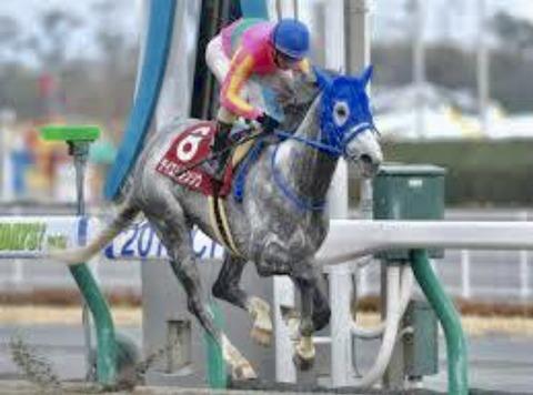 【東海ステークス2019予想展望〜5連勝中のインティvs強い4歳勢vs牝馬ダート女王〜】