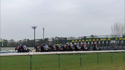 【淀短距離S予想・京成杯2019予想(本命馬)+ロックオン!】