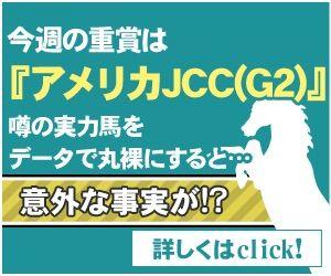 AJCC 2017 予想ー●●●が復活の舞台!ー・新企画【穴ログ】日曜版!