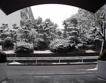 snow1102_1
