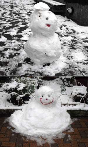 snow1102_daruma