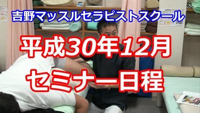 平成30年12月セミナー日程