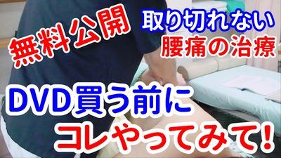 【無料公開】取り切れない腰の痛みに対するマッスルセラピー