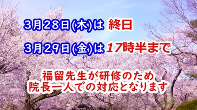 福留研修平成31年3月