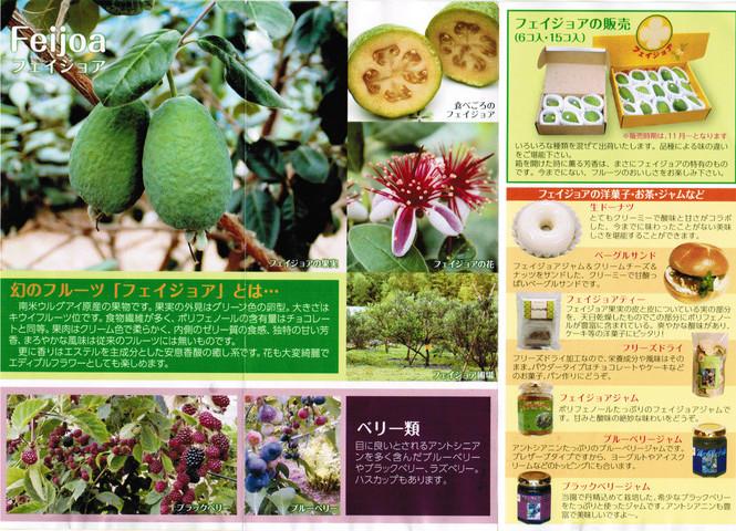 CCI20130805_00001