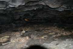 済州島・洞窟に横たわる犠牲者の遺体