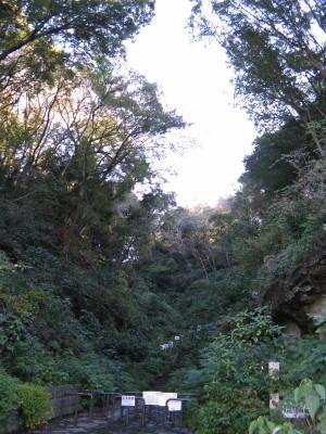 森20121108