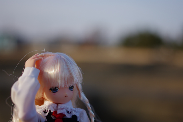 70fc46f7.jpg