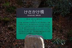 fdc0269e.jpg