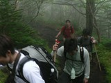 森林地帯を進む5合目