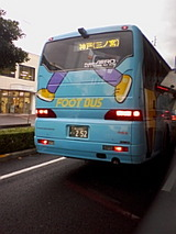 f330d43d.jpg