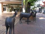 帯広駅周辺の鹿のオブジェ