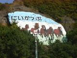 新冠の壁画