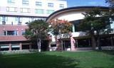 北海道ホテルお庭より