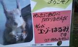 北海道ホテルお庭にて