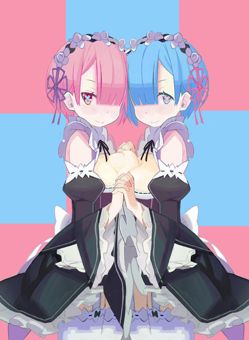 リゼロ Reゼロから始める異世界生活 レム ラム かわいい 双子 姉妹 メイド 550 750 画像 壁紙