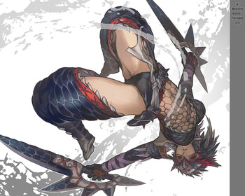 モンスターハンター monster hunter モンハン MH P3 ナルガ 防具 武器 画像 壁紙