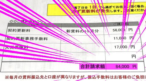 20191114_photo_3