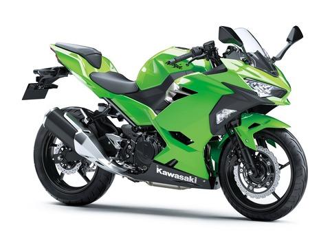 All-New-Kawasaki-Ninja-250-FI-Versi-2018-Warna-Hijau-Polos-3-p7