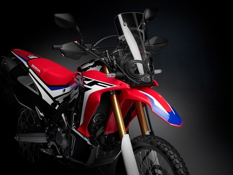 05-Honda_CRF250_Rally