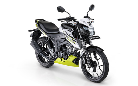 Suzuki-Bandit-Duo-Tone
